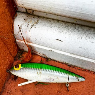 The last move of the green fish. Saw this on our neighbors window sill the other day thinking the color contrast looked really nice, and that the animal was oddly out of place! | by 2composers