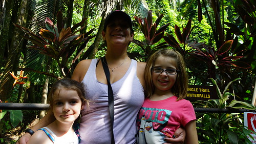 hilo garden island bigisland 2015 vacation travel hawaiibotanicalgarden 500views 1000views