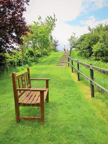 charity ireland irish rescue animal fence bench landscape countryside scenery view cork steps donkey hbm hss donkeysanctuary liscarroll saturdayforstairs
