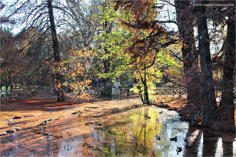 Parco Sempione in autunno.