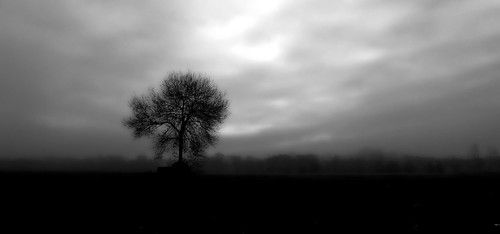 Solitude Hivernale | by photomateur1