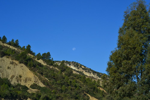 blue sky moon tree nature kabylie outdoor hill algerie soummam remila