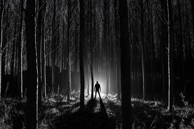 If You Go Down To The Woods Tonight......