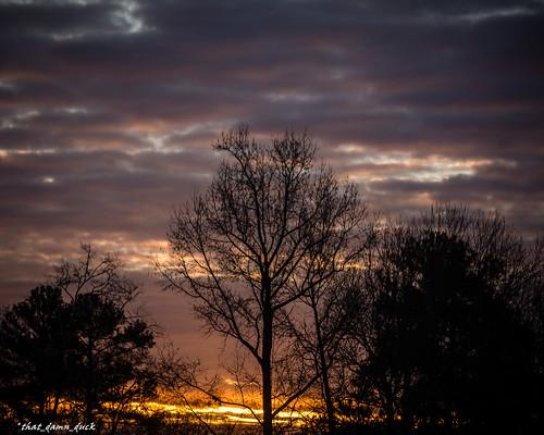 sunrise dawn nature
