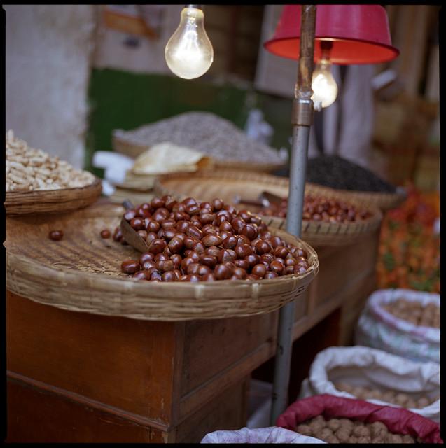 chestnut bulb