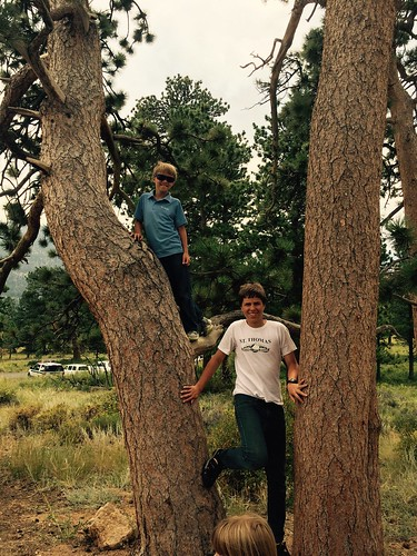 Tree Climbing in Colorado | by prayingmother