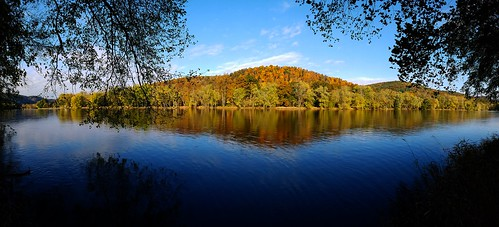 river forest trees landscape scenery serene autumn fall color water outdoors roccotac