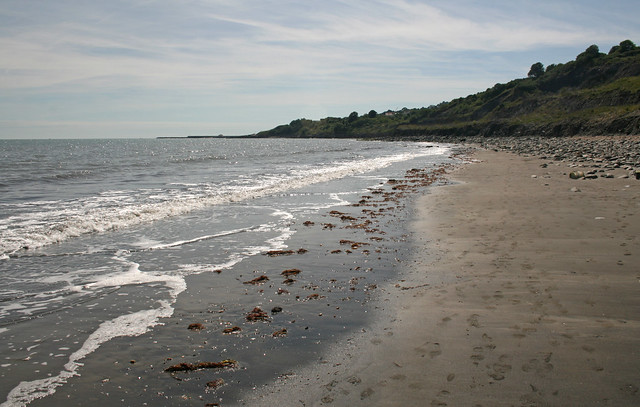 The beach between Charmouth and Lyme Regis