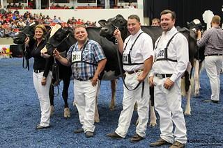 05 octobre 2015 - Jugement Holstein
