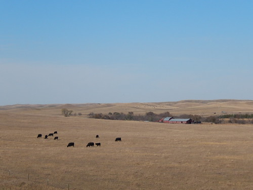 Fort Pierre National Grasslands
