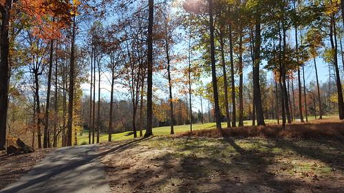 millcreekgolfclub golf autumn sunny