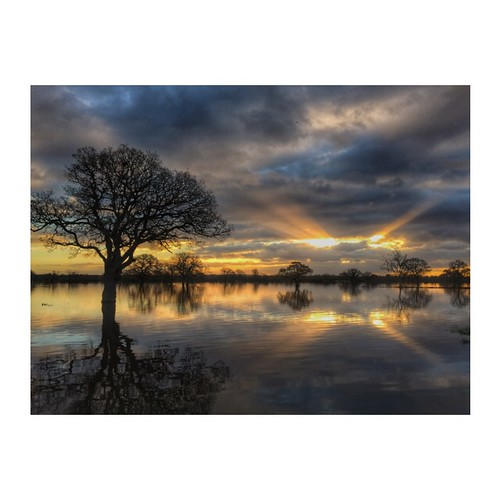 crepuscularsunrisetreessilhouettereflectionscolourswaterfloodskyfieldsiphone