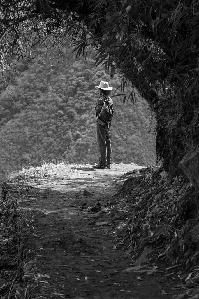 Reflection, Machu Picchu