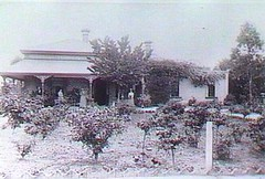 Duffield Street house c.1889