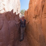 Fiery Furnace, Emily is excited