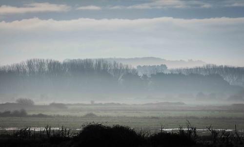 Early Mist Norfolk
