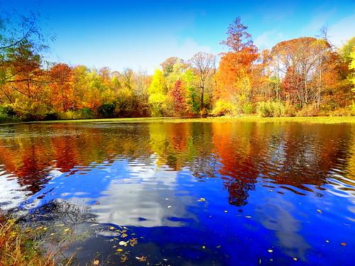 newyork brooklyn dmitriyfomenko image fall autumn prospectpark sky clouds reflection foliage wow