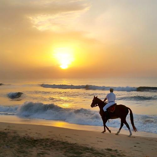 sunrise india travel chennai horseride officer independenceday tamil