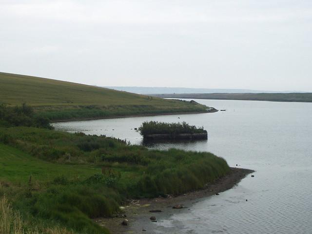 Gore Cove