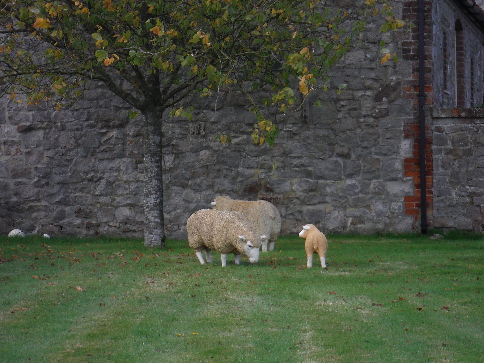 Concrete Sheep, White Acre Farm SWC Walk 255 Pewsey or Marlborough Circular via Avebury