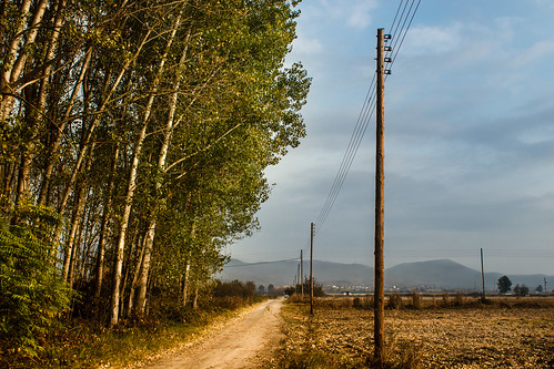 road wood november blue autumn trees sky plant green field grass weather electric clouds rural season landscape countryside outdoor path walk pillar route greece wires serene kilkis makedoniathraki ilobsterit