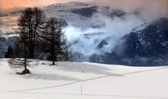 I Prati dell'Armentara - Dolomites Unesco World Heritage - Italy