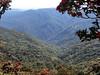 Výlet na Mt. Victoria, foto: Šárka Vacková