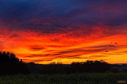 sunset germany bayern deutschland bavaria sonnenuntergang sundown outdoor himmel dämmerung landschaft adelzhausen rametsried