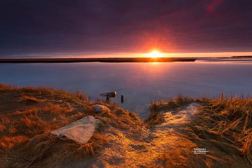 today eastham marches beach capecod nationalpark sunrise sunriseoncapecodnationalseashorenovember172016dapixaraphotography massachusetts usa