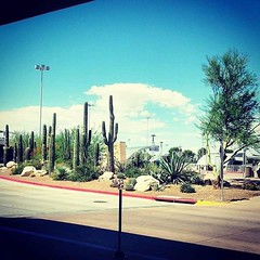 Welcome to Arizona (Tucson 2014)... @passthedutzie  #dutzthewanderer #Lagalag #Wanderlust #Travel #Vacation #Staycation #Trip #tourist #triplookers #travelawesome #travelingourplanet #traveldeeper #instapassport #passionpassport #tasteintravel #luxtravel