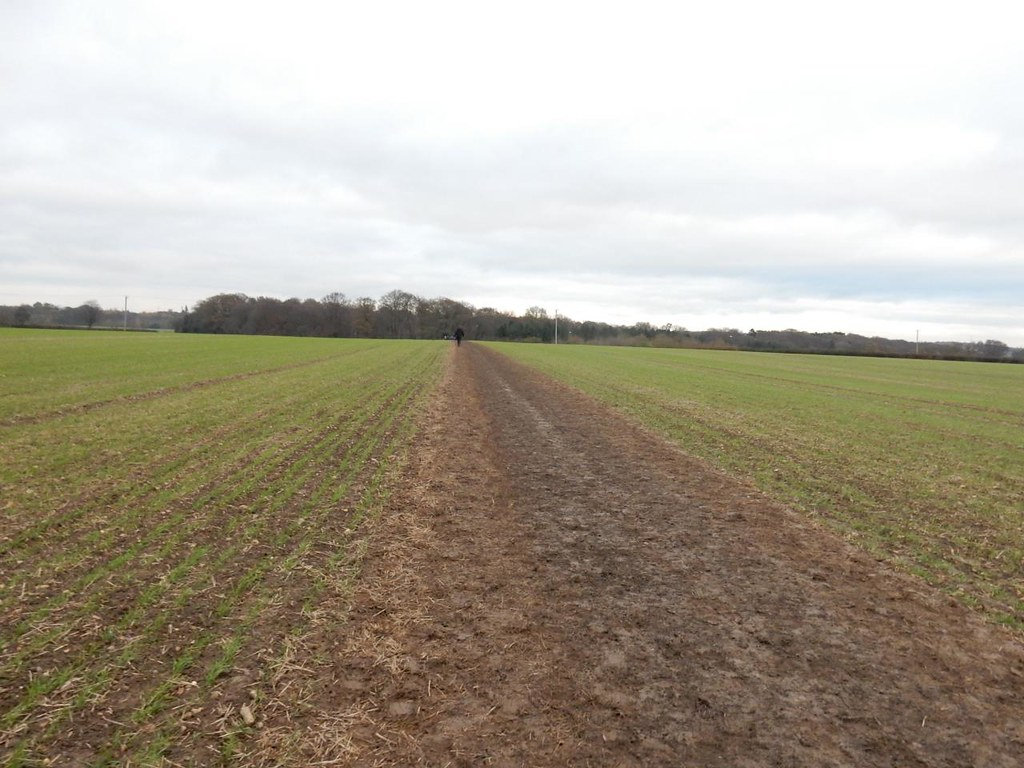 Big field Princes Risborough to Great Missenden