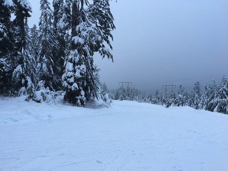 Powerline was fab cross-country skiing fun today! Not too soft, not too icy, lots of powder! Perfect! Thanks @cypressmtn!