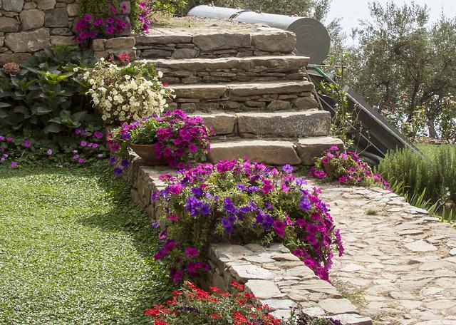 Garden in Cinque Terre