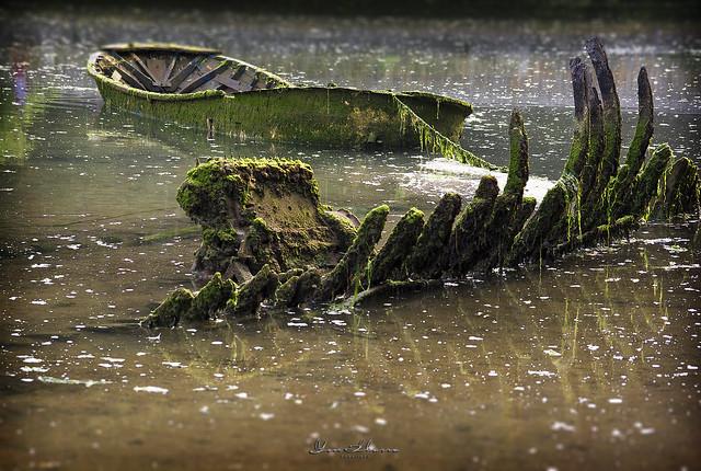 Barcas de la Ria de  Barro 514  Nº17