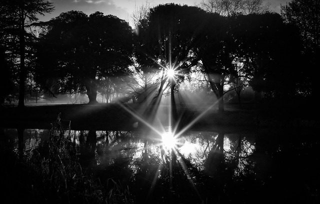 Shining Darkness (Syon Park Sunrise) by Simon Hadleigh-Sparks
