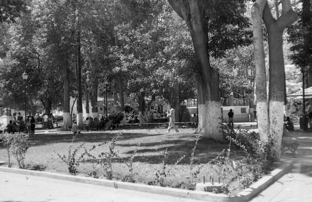 Domingo en el parque  (RRIIISep15014)