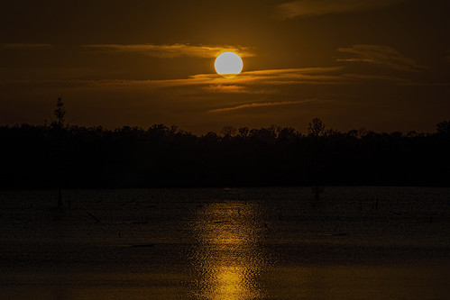 trees sunset sun clouds reflections circle louisiana bossiercity redriverwildliferefuge sonya7rii