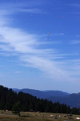 Treh Markstein / Le Treh Paragliding