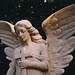 Weeping Angels / Graves