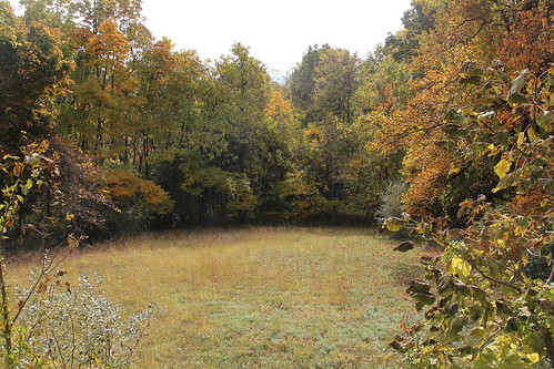 autumn newjersey hunterdoncounty voorheesstatepark