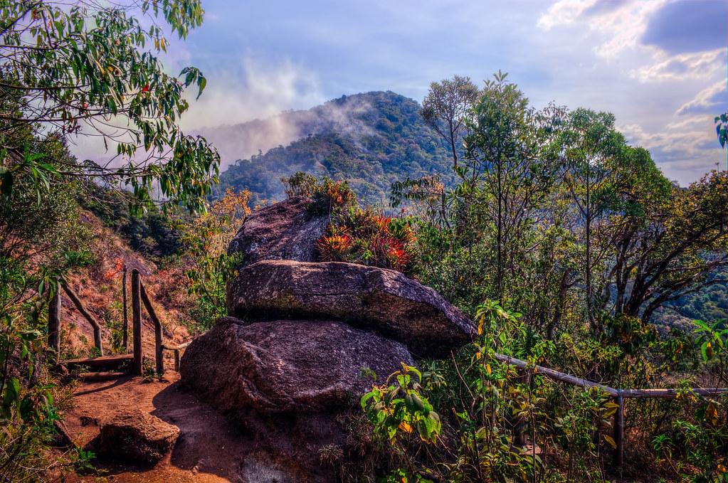 Trilha da Pedra Redonda   Monte Verde - Minas Gerais Brazil   Flickr