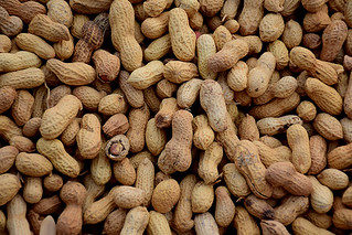 peanuts | by aronbaker2