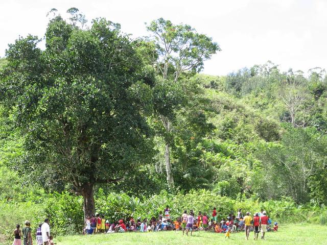 Madagascar5 - 146