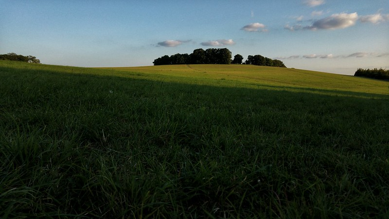 The Hill at Gog Magog Downs