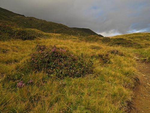 autumn sky mountains alps salzburg grass clouds trekking hiking meadow heath weg kaprun kitzsteinhorn enzinger alexanderenzingerweg alexanderenzingertrail