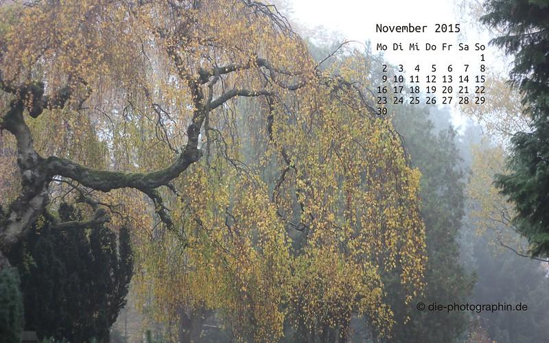 baum_november_kalender_die-photographin