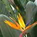 04 - Nawiliwili, Hawaii