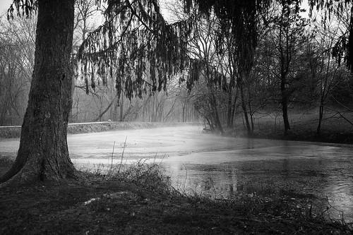 ohio starkcountyohio canalfultonoh canal bw blackandwhite monochrome landscape fog nikon d3s nikkor24120f4vr raw nef cs6 niksep geotagged