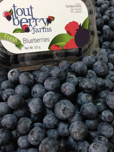 Tout Berry Farms Blueberry Package with Loose Fruits a May 20, 2015 | by toutberryfarms