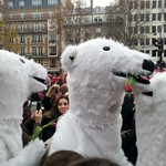 Sat, 12/12/2015 - 12:30pm - Polar bears Applanet Paris climate change